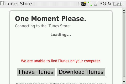 "iTunes' Web Interface saying ""One moment please""."