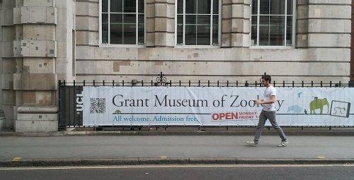 Grant Museum QR Code