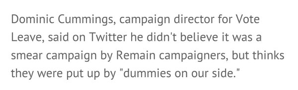 Dominic Cummings admits poster is from dummies on our side