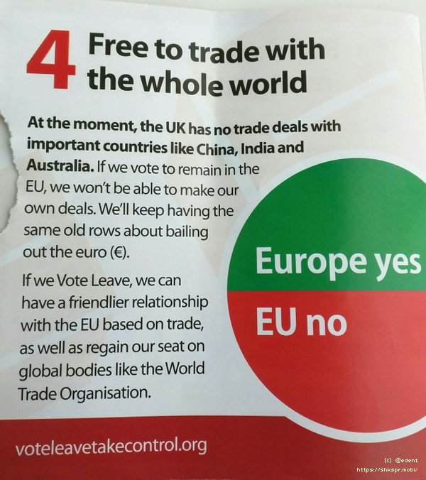 Vote Leave Campaing Flyer-