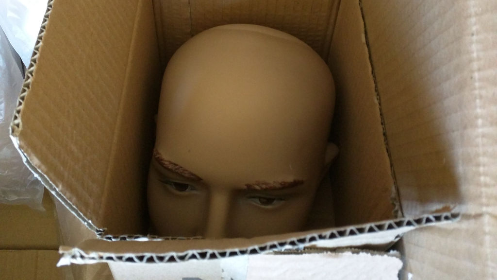 A plastic dummy's head in a box