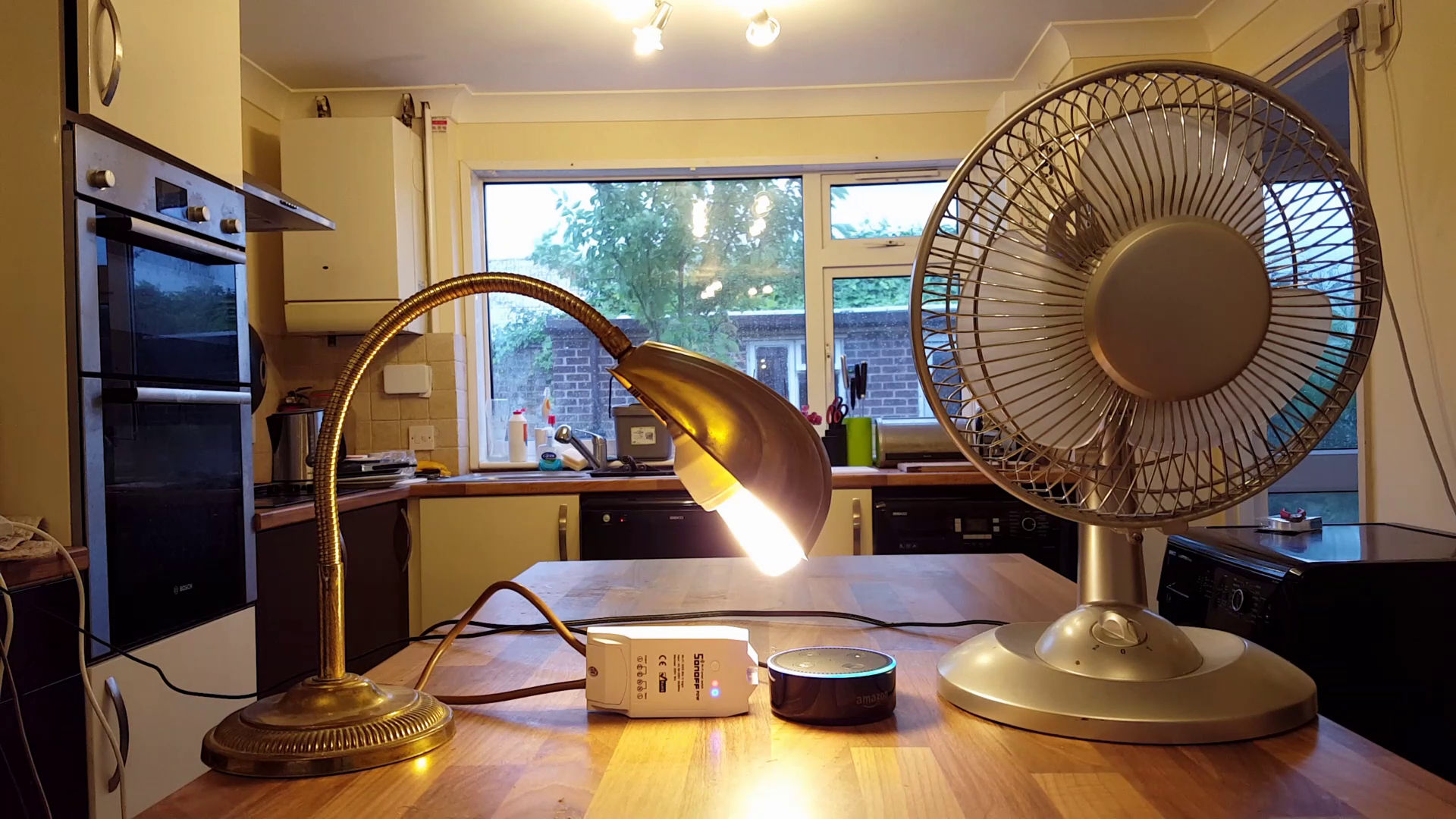 A desktop fan, a lamp, and an Amazon Alexa sit on a kitchen table