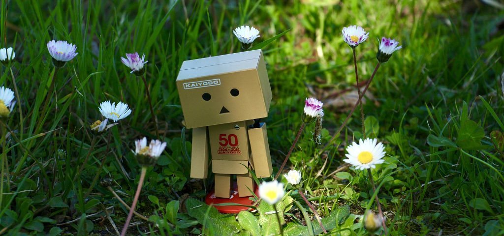 A confused little cardboard robot is lost amongst the daisies