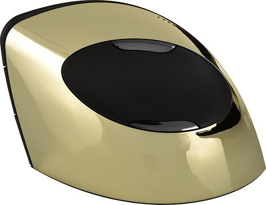 A gold chrome mouse.