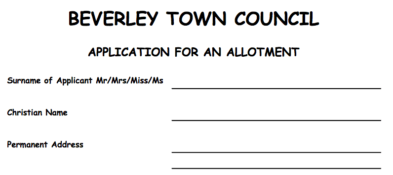A form written in Comic Sans font.