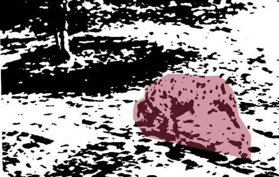 The same dotty image with an area highlighted. It appears to show a dog.