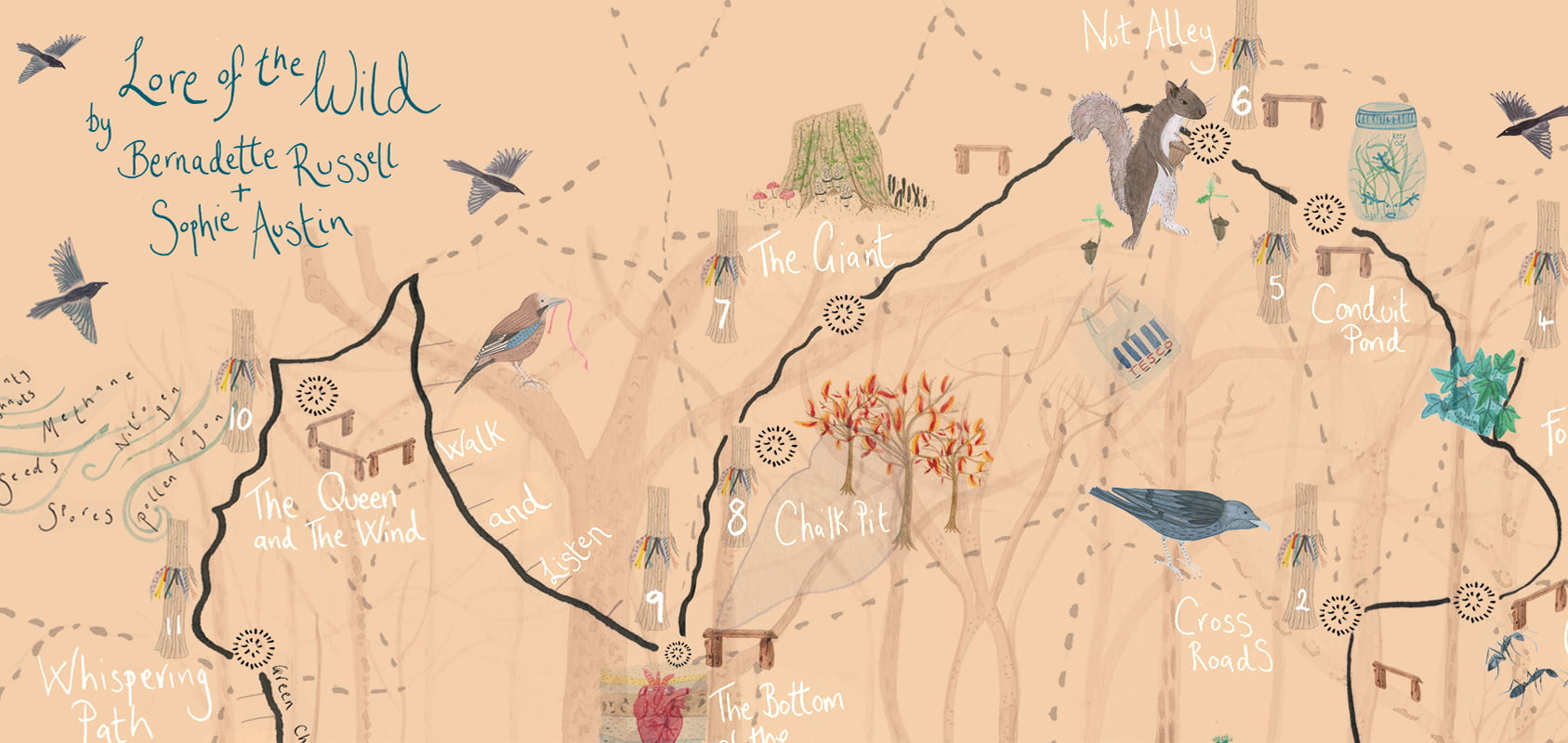 A hand drawn map with the locations of squirrels and crows carefully marked.